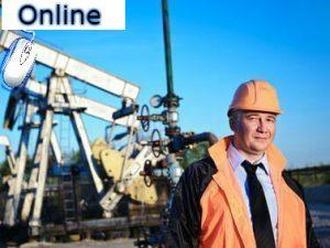 formacion petrolera online