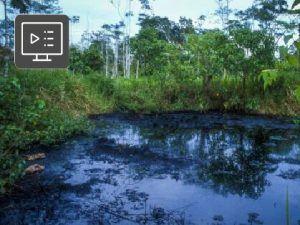 Manejo de Pasivos Ambientales Petroleros - Tratamientos de Piscinas en sus Tres Fases: Agua, Crudo y Sedimento